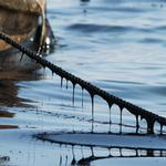 Cleaning up oil spills barehanded