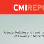 Gender Policies and Feminisation of Poverty in Mozambique (Sub-Project 1)