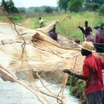 Well-being among Fisherfolks in Africa Research (WELFARE)