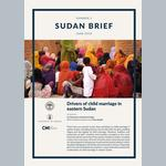 Drivers of child marriage in eastern Sudan