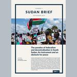 The paradox of federalism and decentralisation in South Sudan:  An instrument and an obstacle for peace