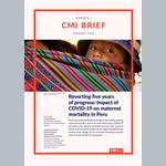 Reverting five years of progress: Impact of COVID-19 on maternal mortality in Peru