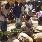 Agricultural Trade with India: Implications for Food Security and Poverty in Bangladesh