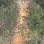 Using Corruption Risk Assessments for REDD+ - An Introduction for Practitioners