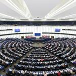 European Parliament study on costs of corruption in developing countries