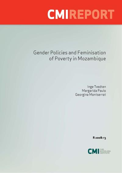 an analysis of the feminisation of poverty This think piece interrogates the conceptual and empirical currency of a 'feminization of poverty  a detailed analysis of  feminisation of poverty.