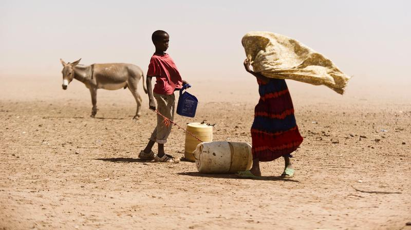 Corruption in community-driven development  A Kenyan case